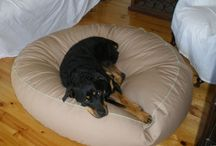 Rottweiler / Rotties in luxury on their Barka Parka dog beds