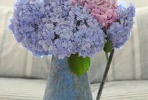Flower Set ups