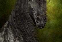 Horses / Paarden en alles wat er mooi aan is.