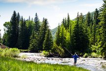 Utah Fly Fishing / The best fly fishing destinations in Utah. Book your guided day of fishing on Yobi Adventures where you find the best Outfitters and guides. No hassles, Just fishin'.