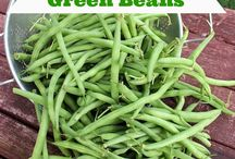 Garden recipes and canning