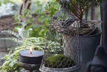 vases,urns / by Sammensuriumet