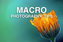 Macro photography tutorial