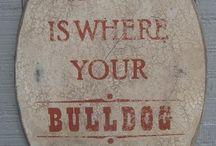 french bulldog love / Frenchie bulldogs