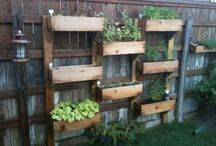 garden ideas / by Marlene Santo Julian