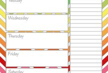 Organisation/Planning