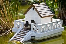 Duck Houses on the Pond / by Sally Wallace