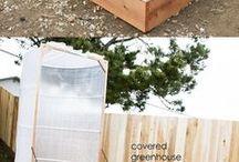 veg garden beds