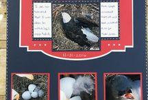 Cricut Cart Family Album / Scrapbook layouts made with the Family Album cricut cartridge.