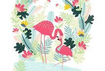 | Flamingo |