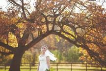 Bridal Portraits / by Cierra Vaught