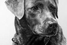 Hundezeichnungen Kunst