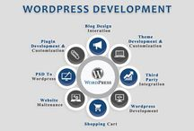 WordPress Development / We provide professional Open source and web development services