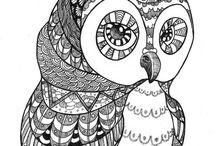 Draws / Sketches etc