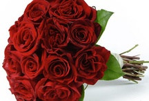 All Rose Bridal Bouquets