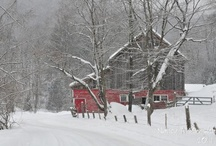 Vermont / My new home away from home.