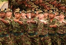 Armed Forces Day / An annual celebration of all that the armed forces do for us.