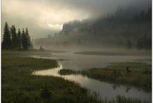Nebellandschaften / November-Nebel, Raureif, Landschaftsaufnahmen