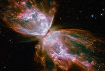 The Amazing wonders of God / by MattShari Trigo