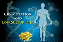 Low sulfur diet