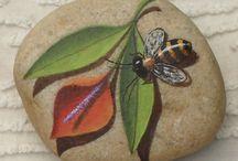 Μέλισσα σε πέτρα