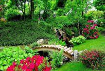 Beautiful gardens / by Silvia Valldeperas