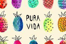 Piña :v