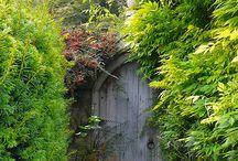 Secret garden - spiration