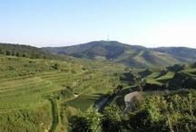 Der Kaiserstuhl / Die wunderbare Landschaft im Südwesten, geprägt vom Weinbau