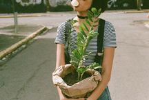 i want succulents