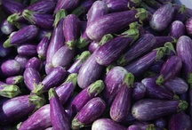 Aubergine / by Fiona Bowtrycle