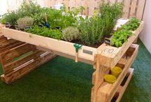 jardin et palettes