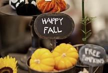 Fall / by Gail Funderburk