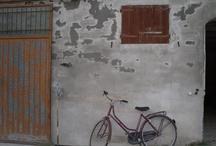 ITALY + WORLD / by Shana LaFore