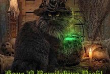 Witchy Woman ~ Animals ~ Birds ~ Reptiles / Witch pets  / by Stephanie West