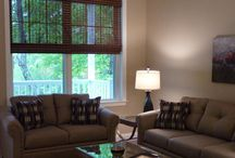 Window Treatments / Beautiful Draperies, Valances, Shades, Shutters and Other Window Treatments