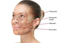 Take Years Off Your Looks Using Face Manipulation Exercises / The Face Rejuvenation Gymnastics Guide For Women And Men To Accomplish A Facelift Without Surgery