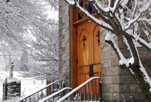 Winter snowy veil