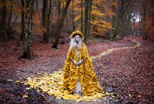 Kirsty Mitchell / her works are my inspiration , wish to do something like that in future https://kirstymitchellphotography.com/