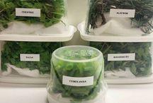 manter verduras verdes