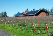 Wineries We Love / Some of our favorite Sonoma County Wineries.