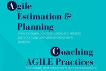 IT/agile