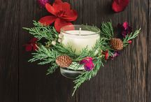 Aveda Holiday 2016 / Aveda gifts and Salon Oriana promotions