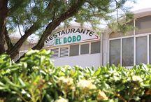Primavera en El Bobo / Llega la primavera y el buen tiempo a nuestro restaurante.