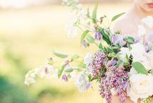 lavendel hochzeit  |  lavender wedding