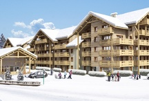 Properties in Les 2 Alpes / Ski Properties in the French Alps