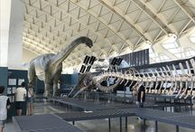 Valencia españa / Museo taurino