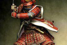 Samurai worriers