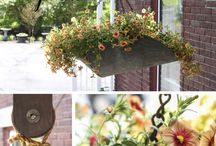 Outdoor Ideas / by Jeannie N' Dave Smith
