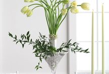 Flower: Tulip / by Rose of Sharon Floral Designs, Althea Wiles